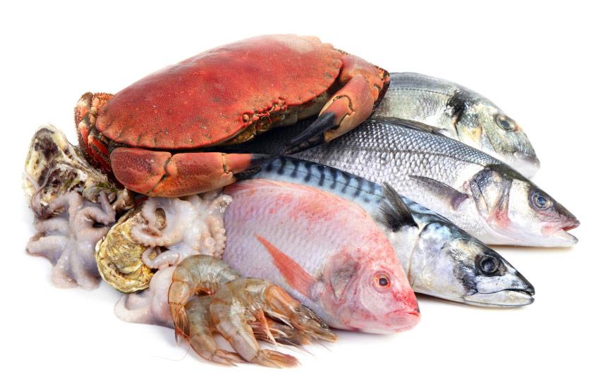 Surtido de mariscos y pescados frescos de las rías gallegas