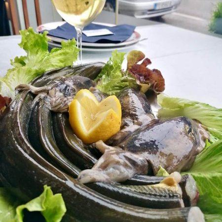 Bandeja de pescados selectos: chocos frescos y merluza fresca de la ría con limón y vino blanco